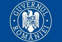 Guvernul Romaniei profesori