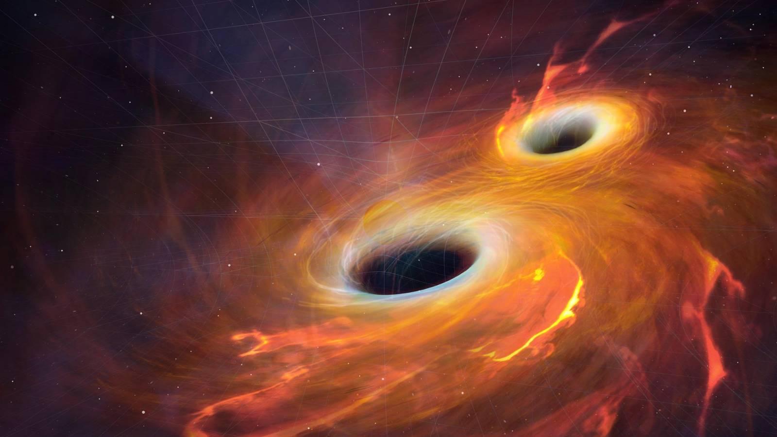 gaura neagra intermediara