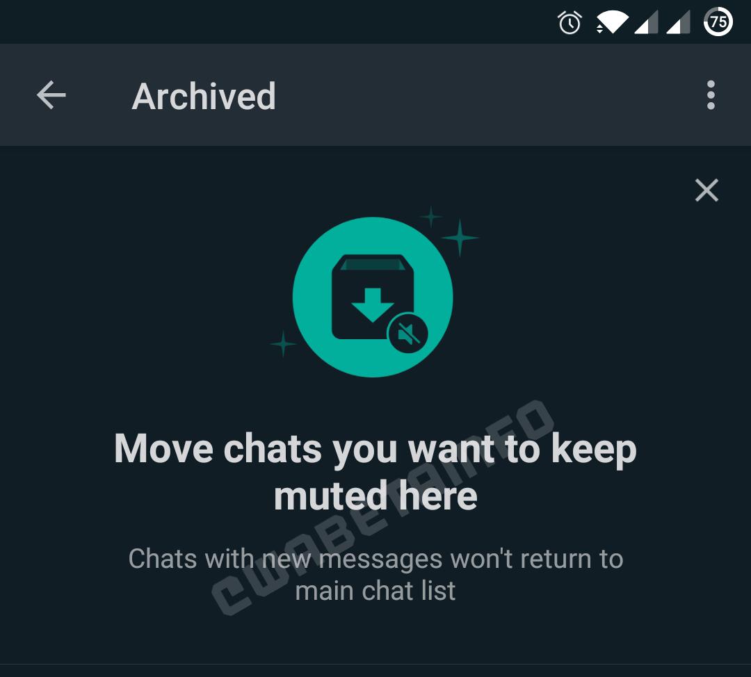 WhatsApp ignorare conversatii