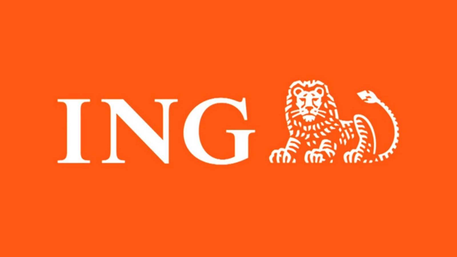 ING Bank petitie