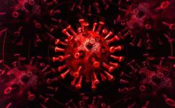 Coronavirus Romania Cazuri Vindecari 3 Martie