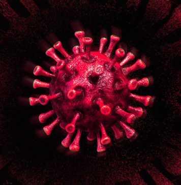Coronavirus Romania Numarul Noi de Cazuri Noi in 16 Septembrie 2021
