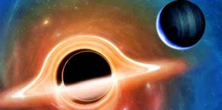 Gaura Neagra parabolic