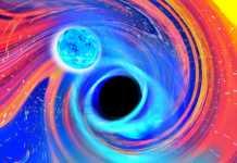 Gaura Neagra pulsar